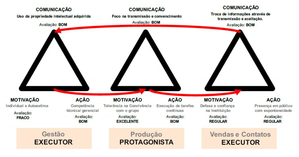 perfil-funcional-profissional_mapeamento-vital
